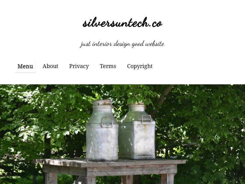SilverSun Technologies, Inc. Skyrocketed