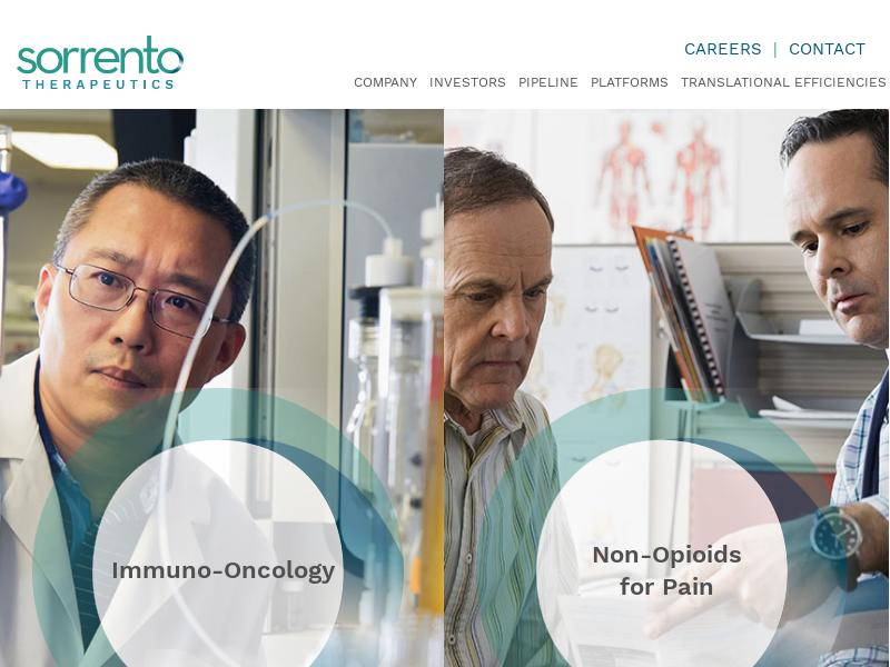 Sorrento Therapeutics, Inc. Skyrocketed